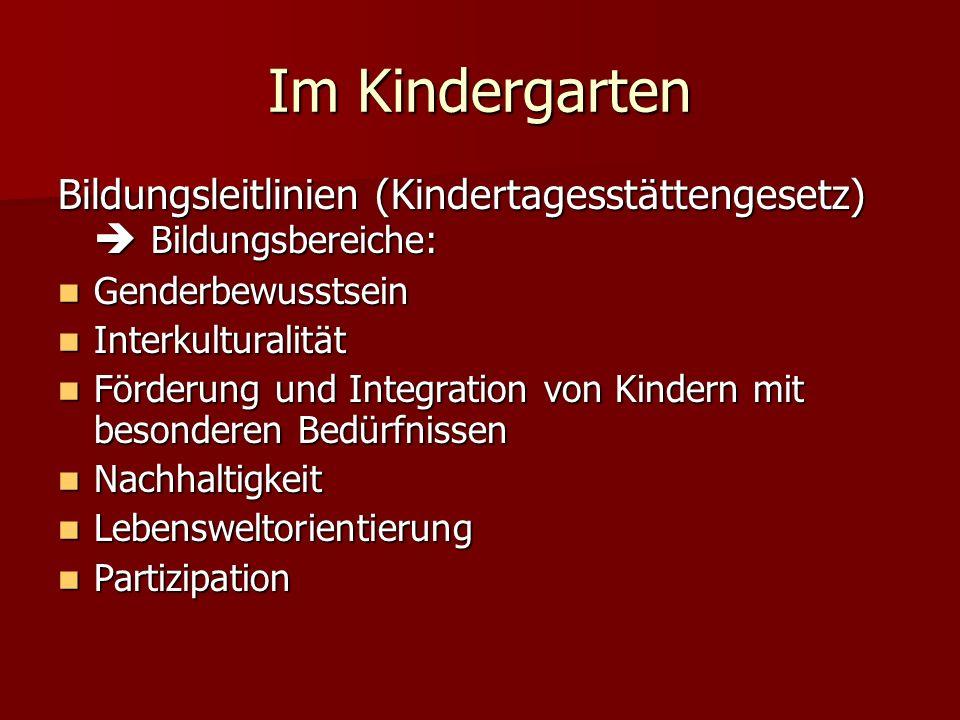 Im Kindergarten Bildungsleitlinien (Kindertagesstättengesetz) Bildungsbereiche: Genderbewusstsein Genderbewusstsein Interkulturalität Interkulturalitä