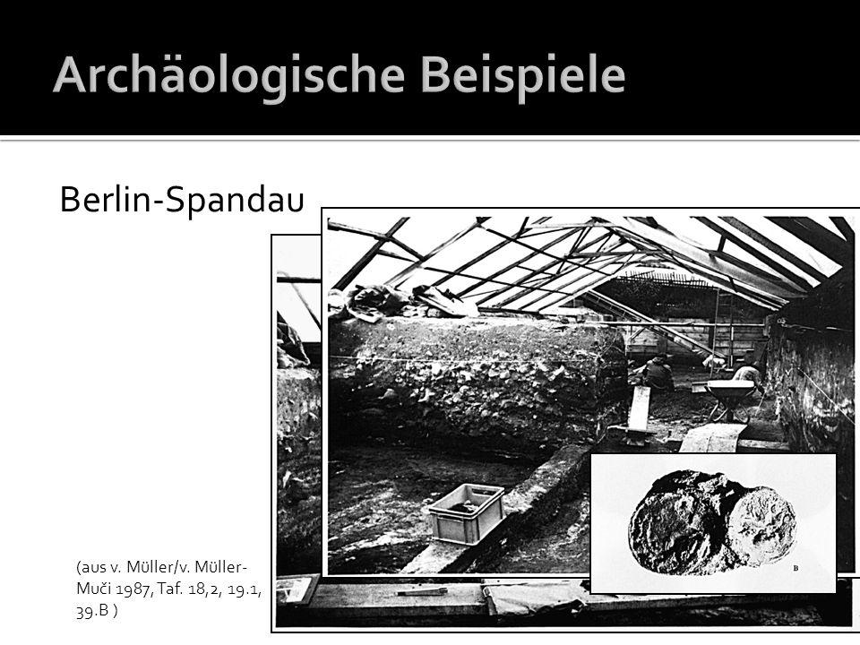 Berlin-Spandau (aus v. Müller/v. Müller- Muči 1987, Taf. 18,2, 19.1, 39.B )