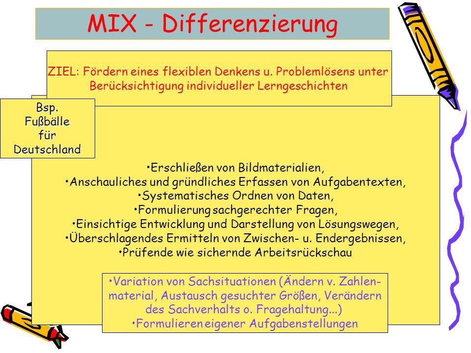 MIX - Differenzierung Erschließen von Bildmaterialien, Anschauliches und gründliches Erfassen von Aufgabentexten, Systematisches Ordnen von Daten, For