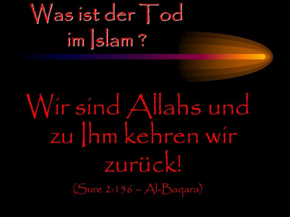Was ist der Tod im Islam ? Wir sind Allahs und zu Ihm kehren wir zurück! (Sure 2:156 – Al-Baqara)