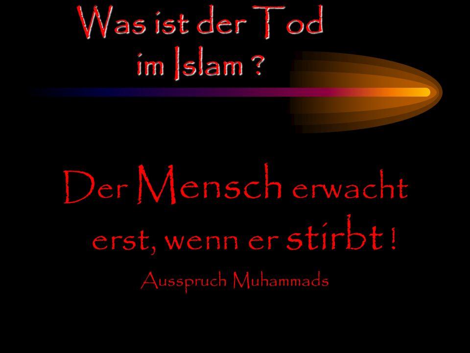 Der Mensch erwacht erst, wenn er stirbt ! Ausspruch Muhammads Was ist der Tod im Islam ?
