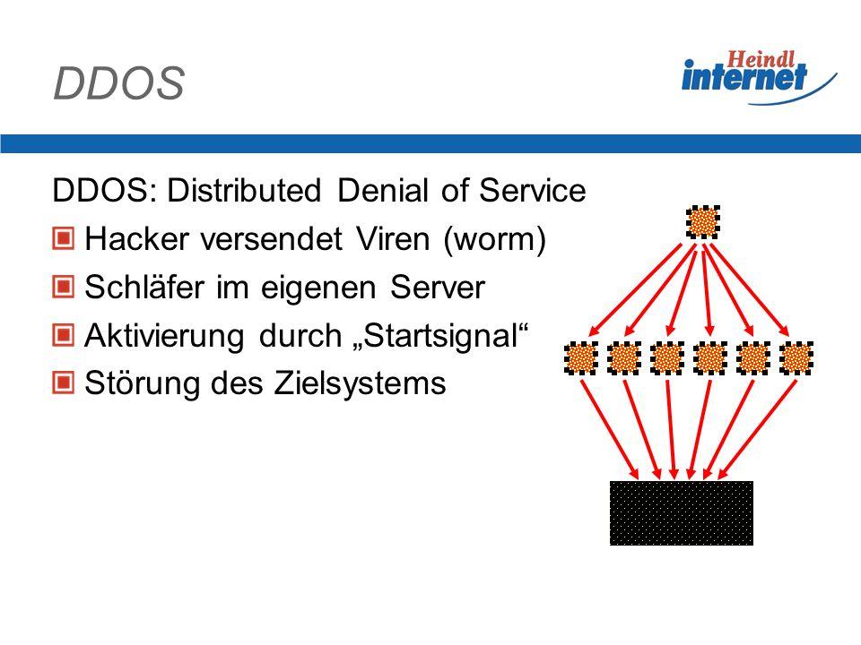 Internetzugang der Firma Leistung des Providers Verfügbarkeit Schutzmaßnahmen Firewall Filterfunktion gegen Angreifer Viren DDOS