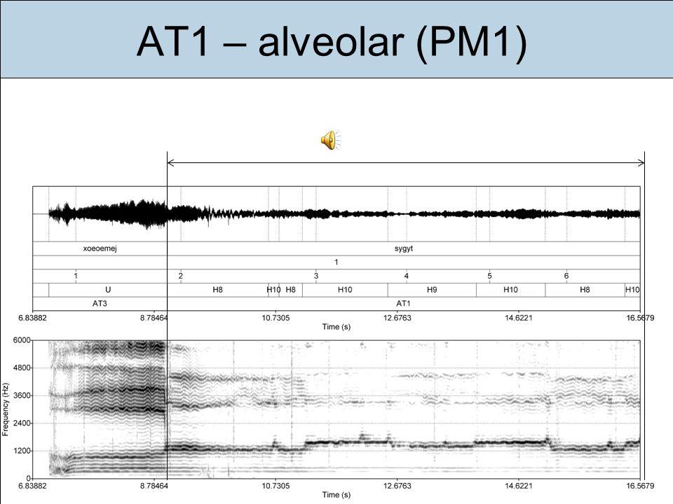 Einführung Ziele Gegenstand Methode Ergebnisse Diskussion Fazit Ausblick AT1 – alveolar (PM1)