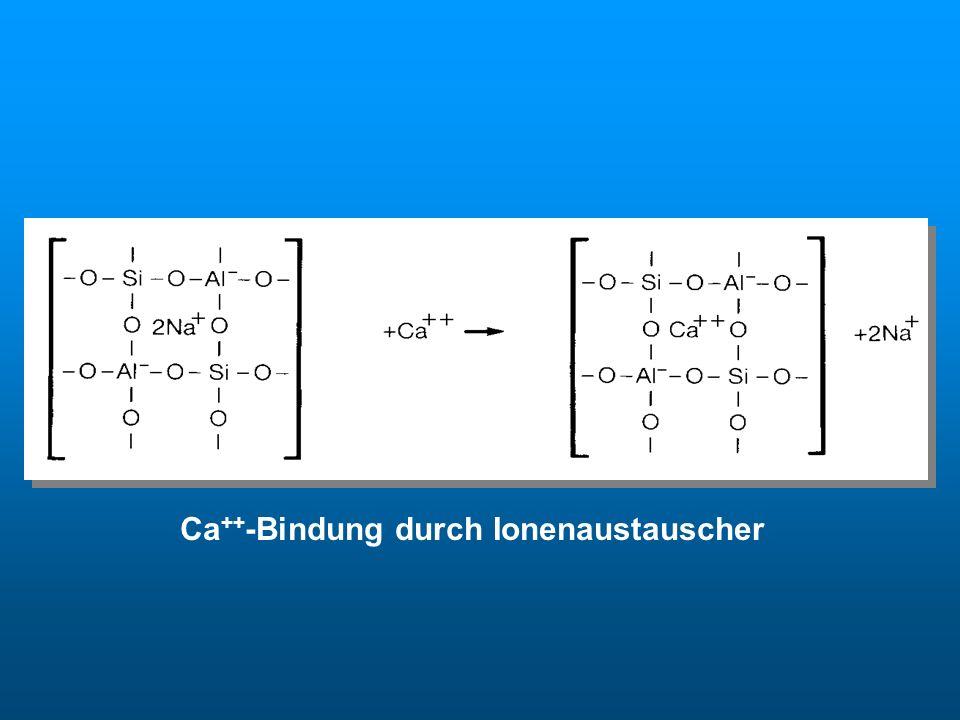 Ca ++ -Bindung durch Ionenaustauscher Ionenaustauscher