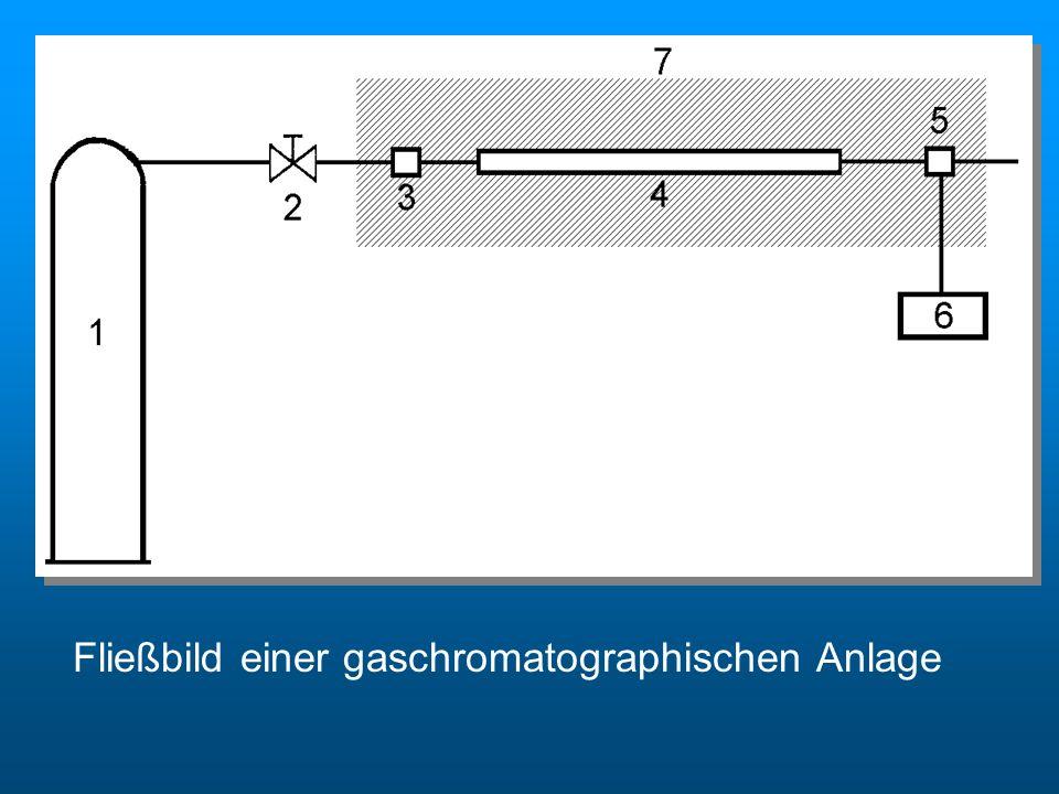 Fließbild einer gaschromatographischen Anlage