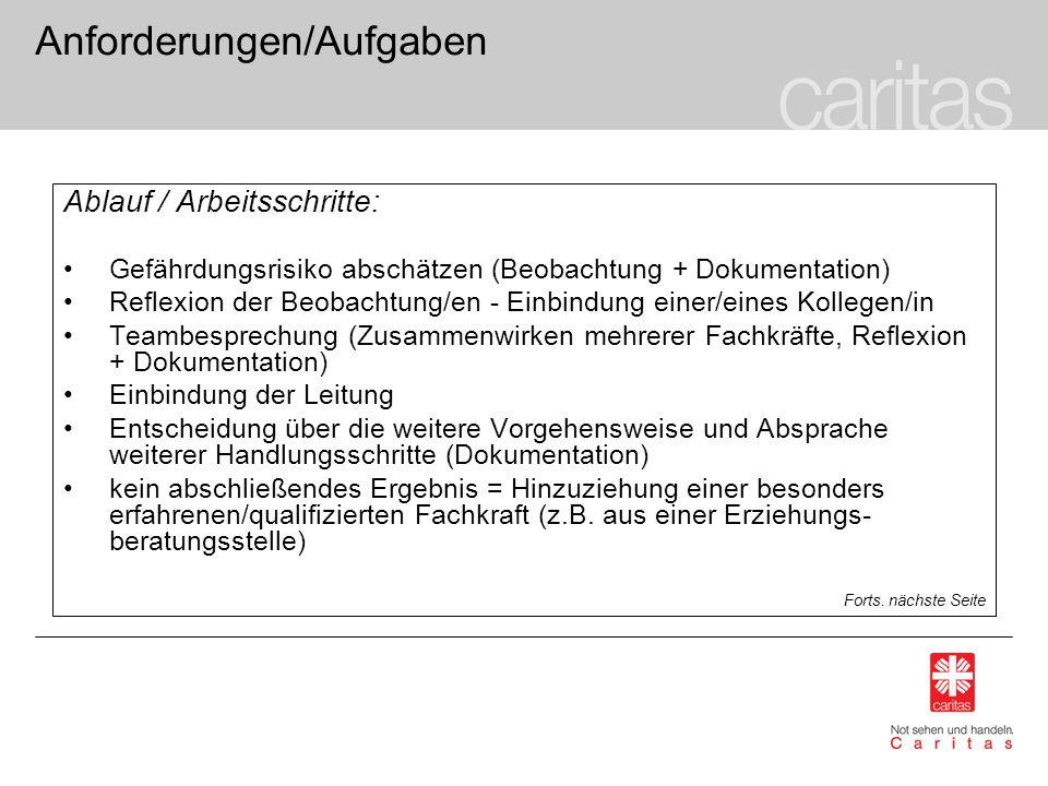 Anforderungen/Aufgaben Ablauf / Arbeitsschritte: Gefährdungsrisiko abschätzen (Beobachtung + Dokumentation) Reflexion der Beobachtung/en - Einbindung