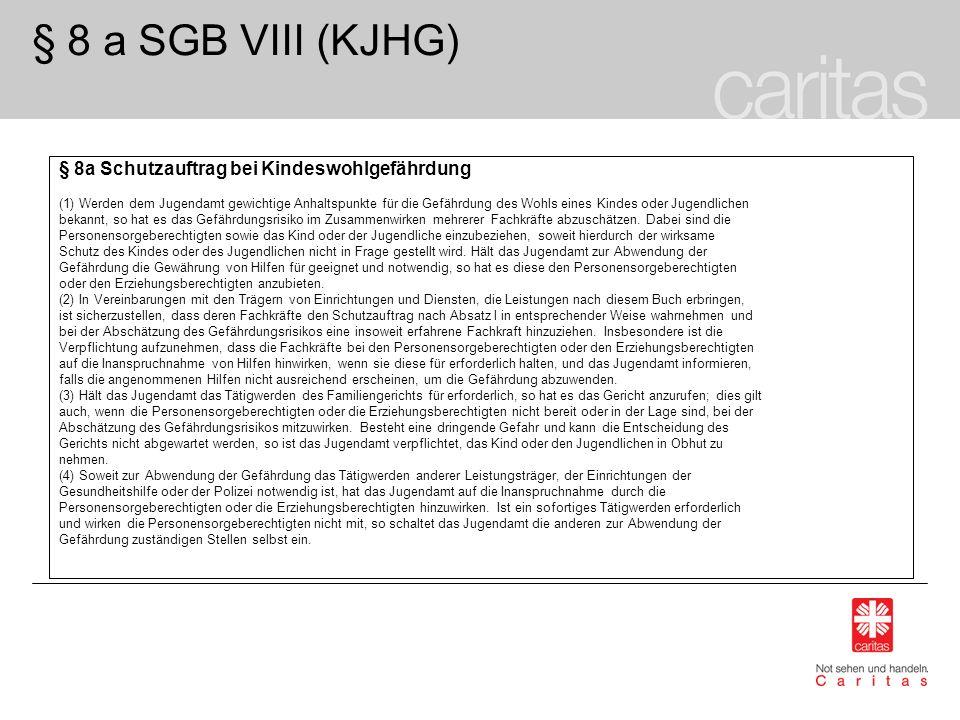§ 8 a SGB VIII (KJHG) § 8a Schutzauftrag bei Kindeswohlgefährdung (1) Werden dem Jugendamt gewichtige Anhaltspunkte für die Gefährdung des Wohls eines