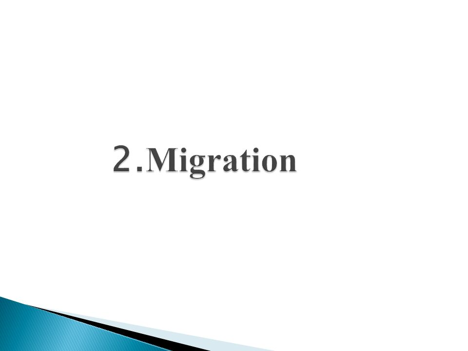 ca.15 Mio. Menschen leben mit Migrationshintergrund im Jahr 2009 in der BRD 19 % der Bev.