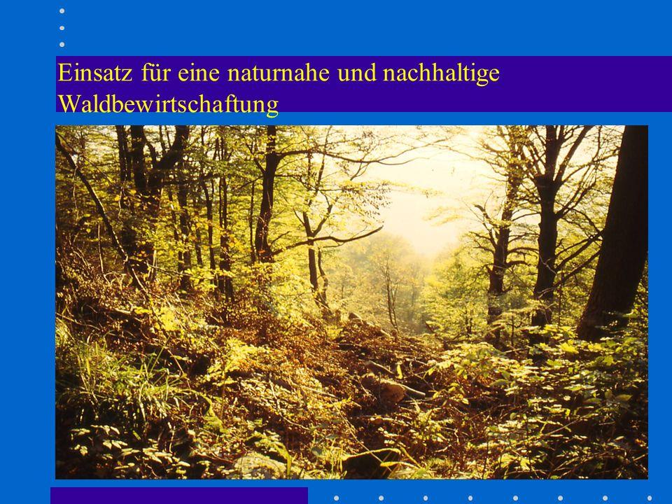 Einsatz für eine naturnahe und nachhaltige Waldbewirtschaftung