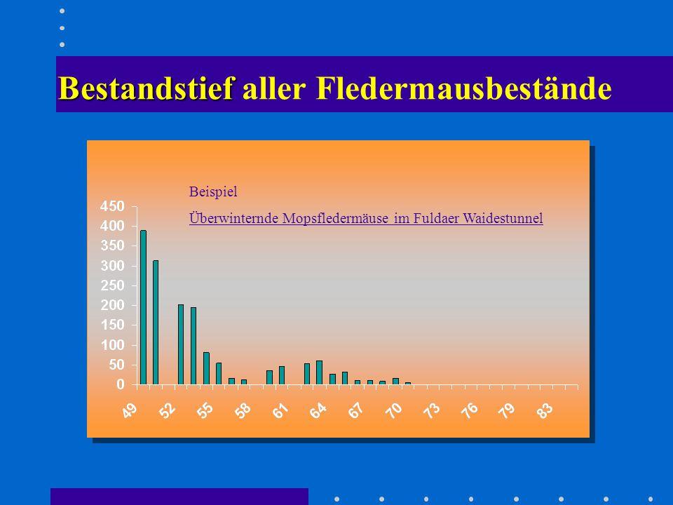 Bestandstief Bestandstief aller Fledermausbestände Beispiel Überwinternde Mopsfledermäuse im Fuldaer Waidestunnel