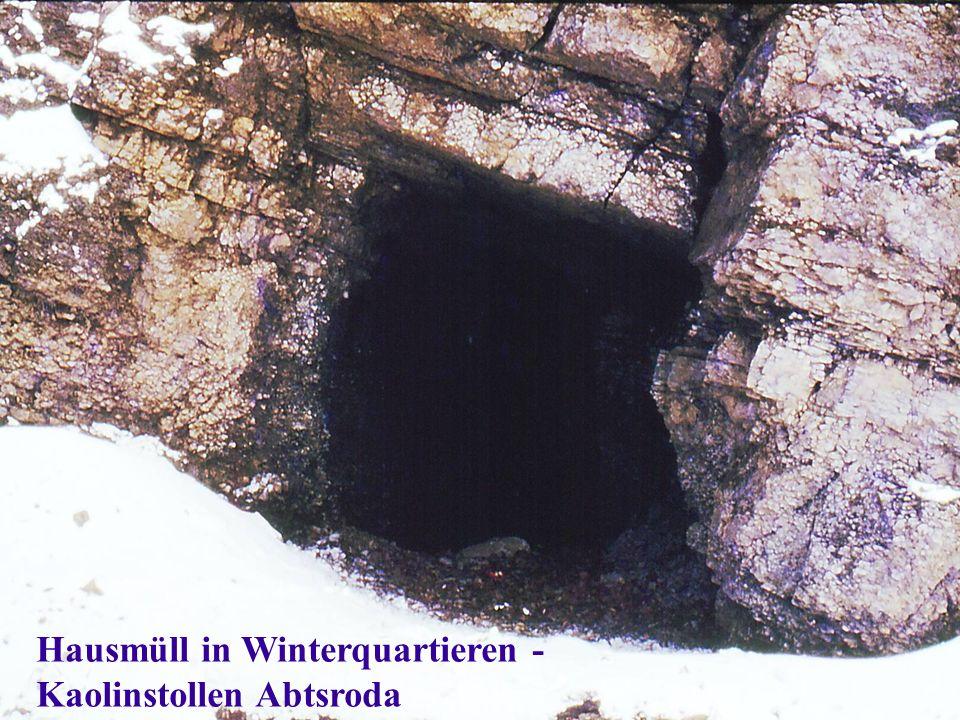 Hausmüll in Winterquartieren - Kaolinstollen Abtsroda