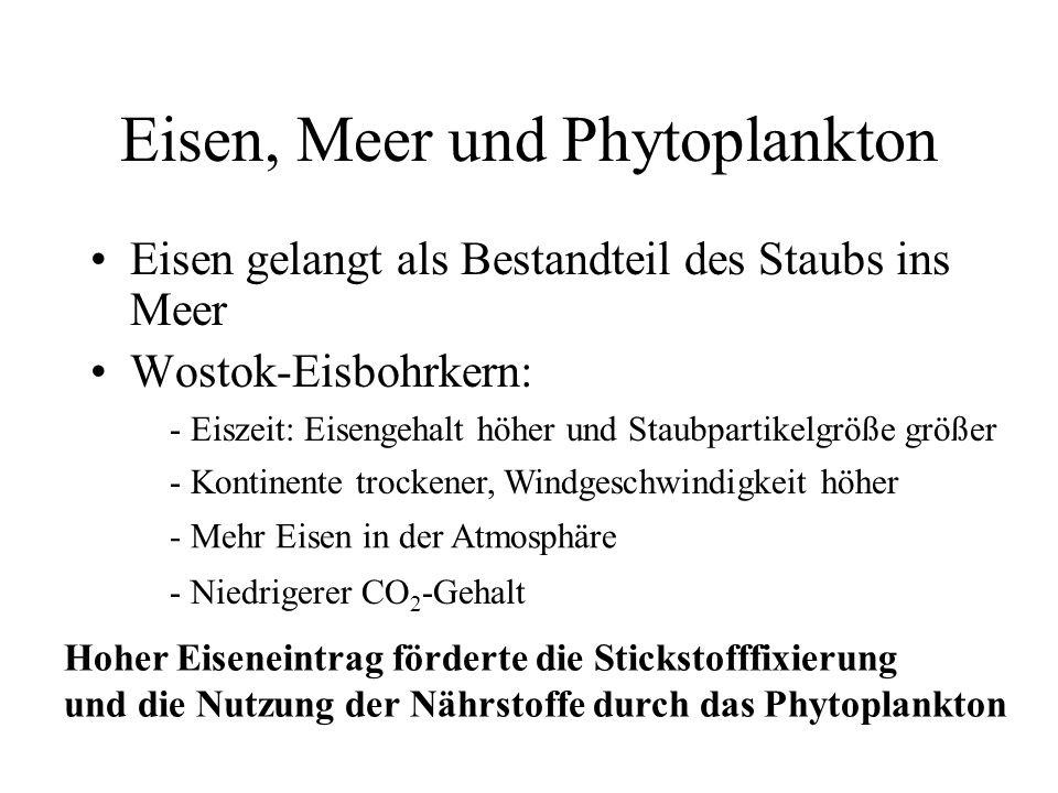 Eisen, Meer und Phytoplankton Eisen gelangt als Bestandteil des Staubs ins Meer Wostok-Eisbohrkern: - Eiszeit: Eisengehalt höher und Staubpartikelgröß
