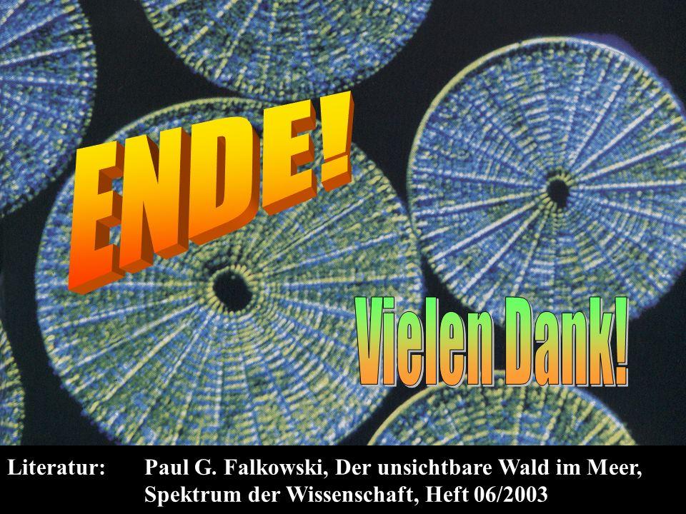 Literatur: Paul G. Falkowski, Der unsichtbare Wald im Meer, Spektrum der Wissenschaft, Heft 06/2003