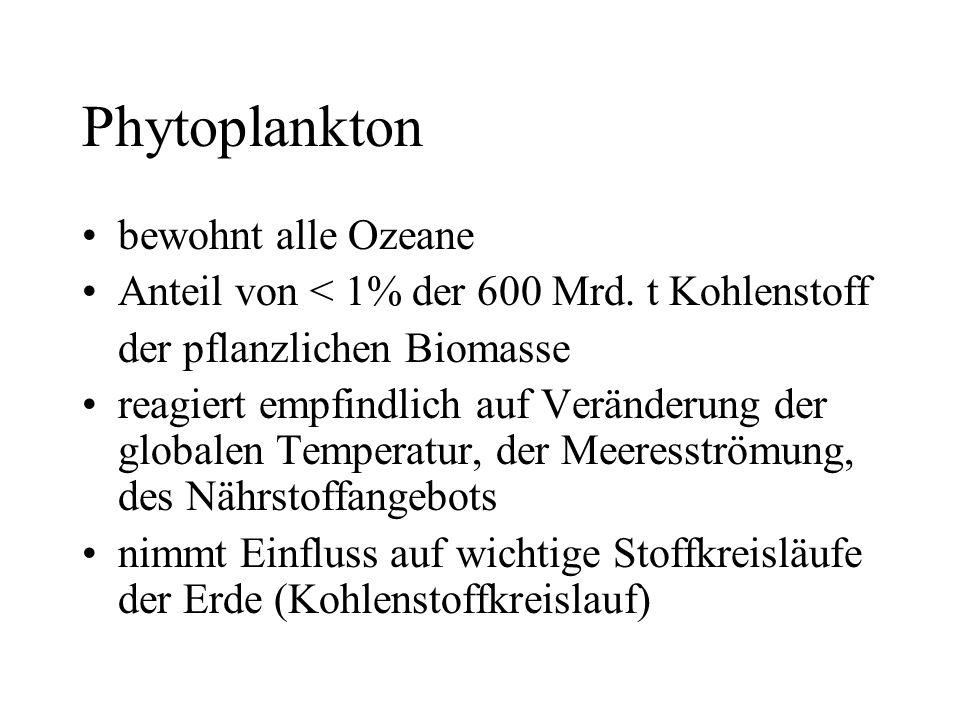 Phytoplankton bewohnt alle Ozeane Anteil von < 1% der 600 Mrd. t Kohlenstoff der pflanzlichen Biomasse reagiert empfindlich auf Veränderung der global