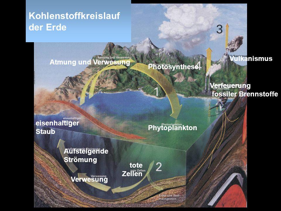 Kohlenstoffkreislauf der Erde Phytoplankton eisenhaltiger Staub tote Zellen Verwesung Aufsteigende Strömung Verfeuerung fossiler Brennstoffe Vulkanism