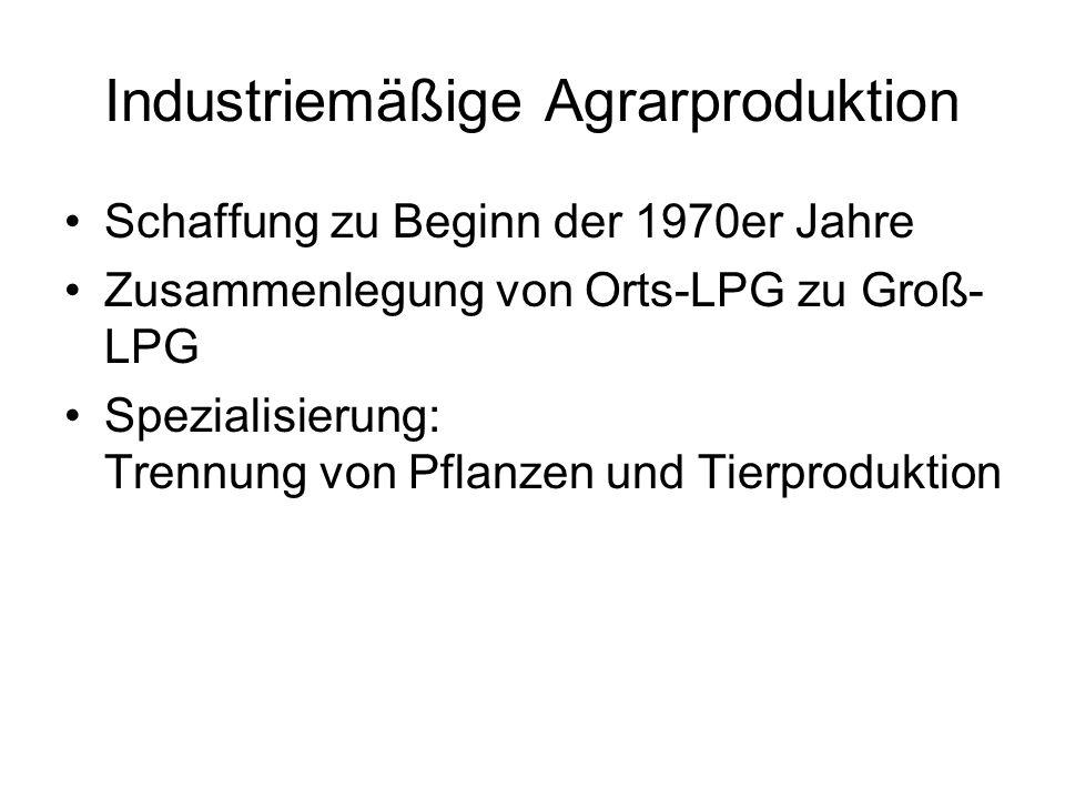 Industriemäßige Agrarproduktion Schaffung zu Beginn der 1970er Jahre Zusammenlegung von Orts-LPG zu Groß- LPG Spezialisierung: Trennung von Pflanzen u