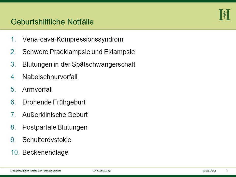 Geburtshilfliche Notfälle im Rettungsdienst Andreas Süße 09.01.2013 HELIOS Klinikum Aue