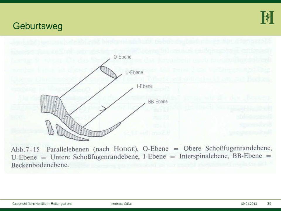 38 Geburtshilfliche Notfälle im Rettungsdienst Andreas Süße09.01.2013 Die normale Geburt