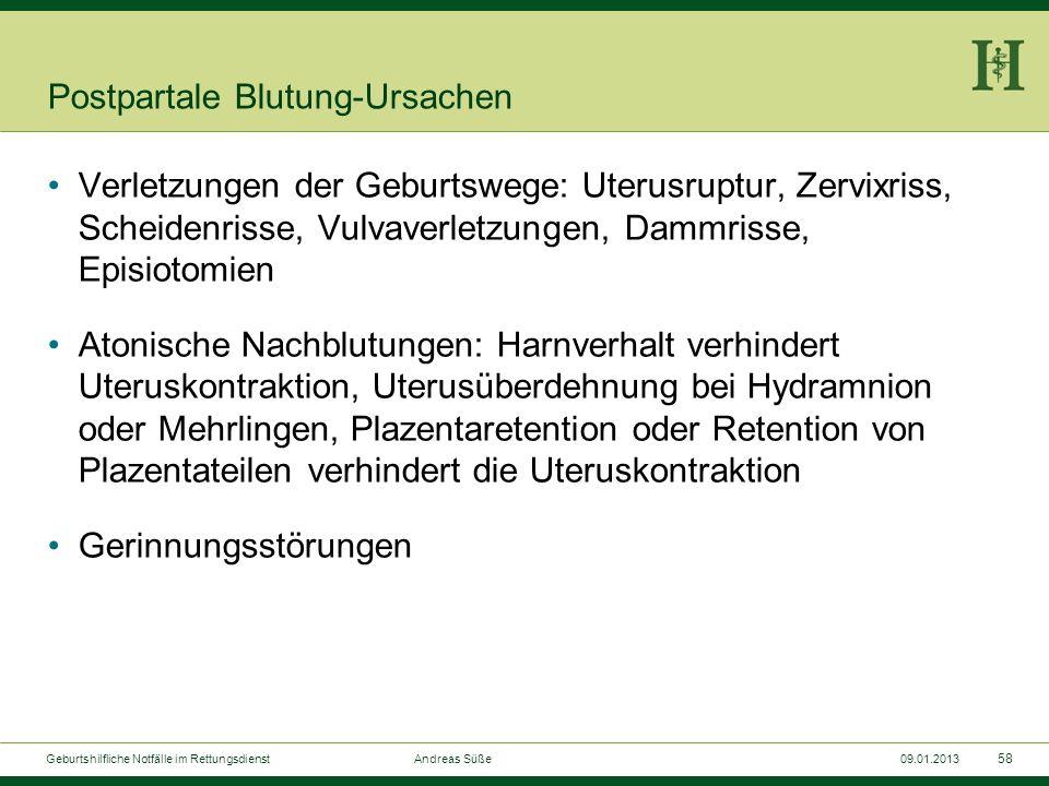 57 Geburtshilfliche Notfälle im Rettungsdienst Andreas Süße09.01.2013 Fritsche-Lagerung
