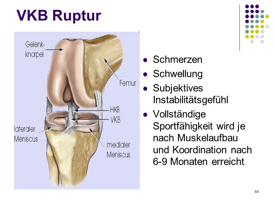 44 VKB Ruptur Schmerzen Schwellung Subjektives Instabilitätsgefühl Vollständige Sportfähigkeit wird je nach Muskelaufbau und Koordination nach 6-9 Mon