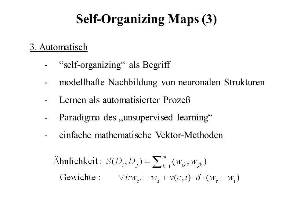 Self-Organizing Maps (3) 3. Automatisch -self-organizing als Begriff -modellhafte Nachbildung von neuronalen Strukturen -Lernen als automatisierter Pr