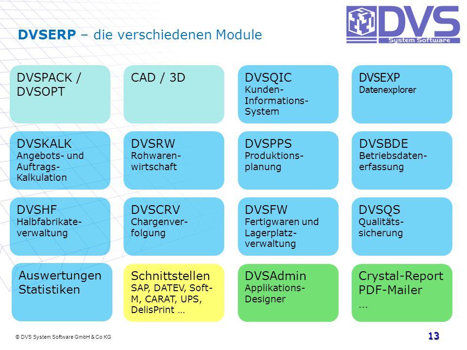 © DVS System Software GmbH & Co KG 13 DVSERP – die verschiedenen Module DVSPACK / DVSOPT DVSEXP Datenexplorer DVSBDE Betriebsdaten- erfassung DVSKALK