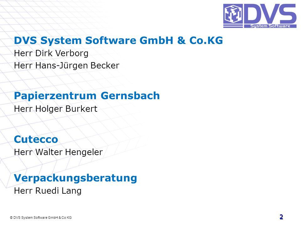 © DVS System Software GmbH & Co KG 2 DVS System Software GmbH & Co.KG Herr Dirk Verborg Herr Hans-Jürgen Becker Papierzentrum Gernsbach Herr Holger Bu