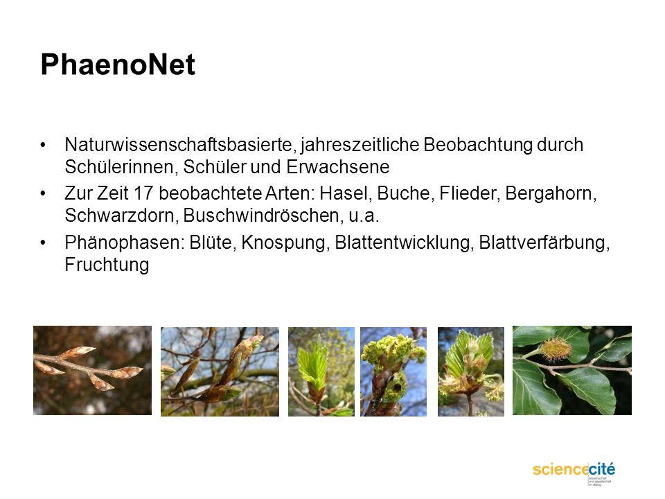PhaenoNet Naturwissenschaftsbasierte, jahreszeitliche Beobachtung durch Schülerinnen, Schüler und Erwachsene Zur Zeit 17 beobachtete Arten: Hasel, Buc