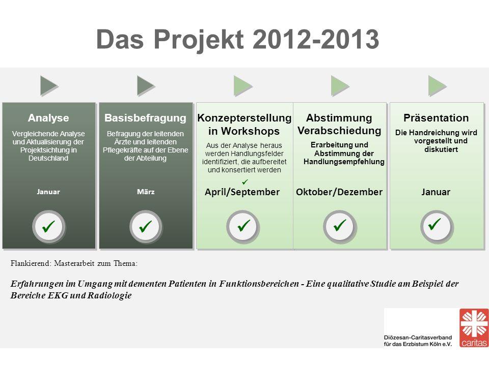 Das Projekt 2012-2013 Analyse Vergleichende Analyse und Aktualisierung der Projektsichtung in Deutschland Analyse Vergleichende Analyse und Aktualisie