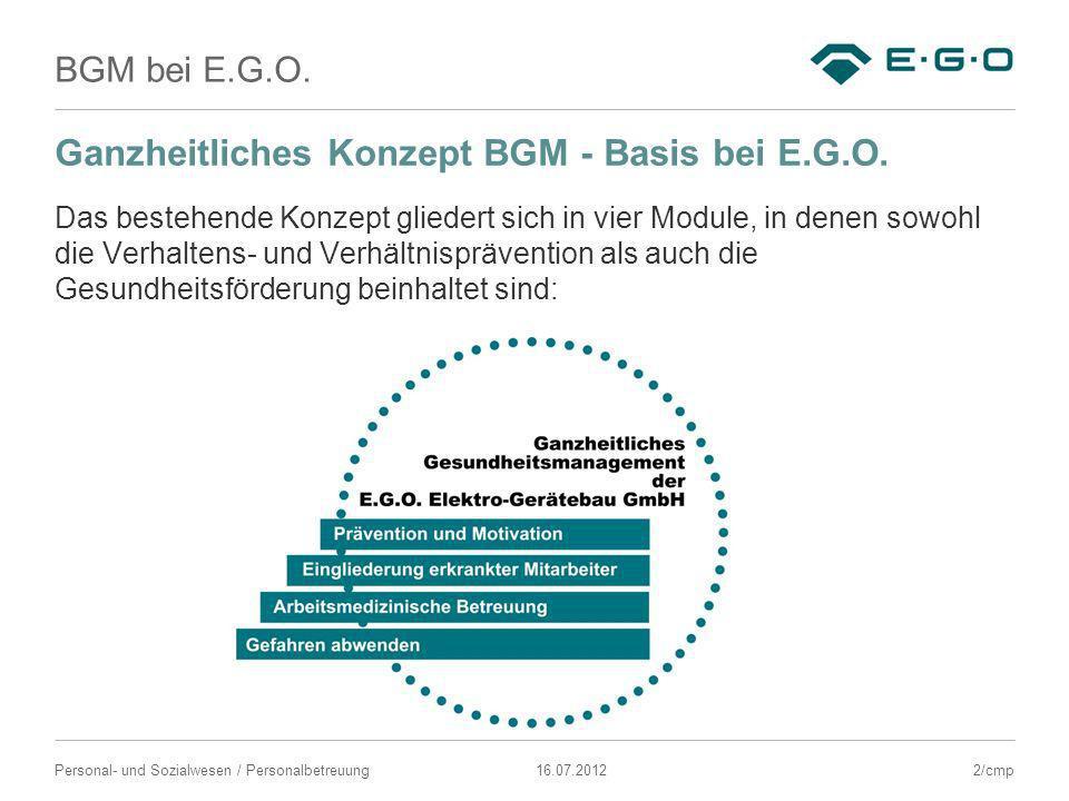 BGM bei E.G.O. 16.07.2012Personal- und Sozialwesen / Personalbetreuung Ganzheitliches Konzept BGM - Basis bei E.G.O. Das bestehende Konzept gliedert s
