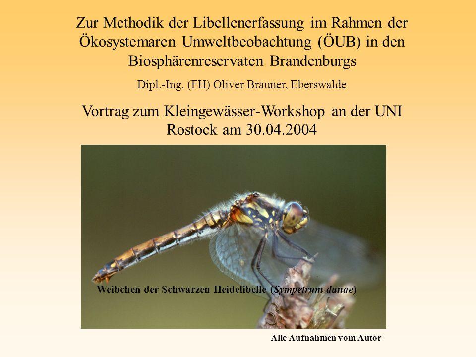 Zur Methodik der Libellenerfassung im Rahmen der Ökosystemaren Umweltbeobachtung (ÖUB) in den Biosphärenreservaten Brandenburgs Dipl.-Ing. (FH) Oliver