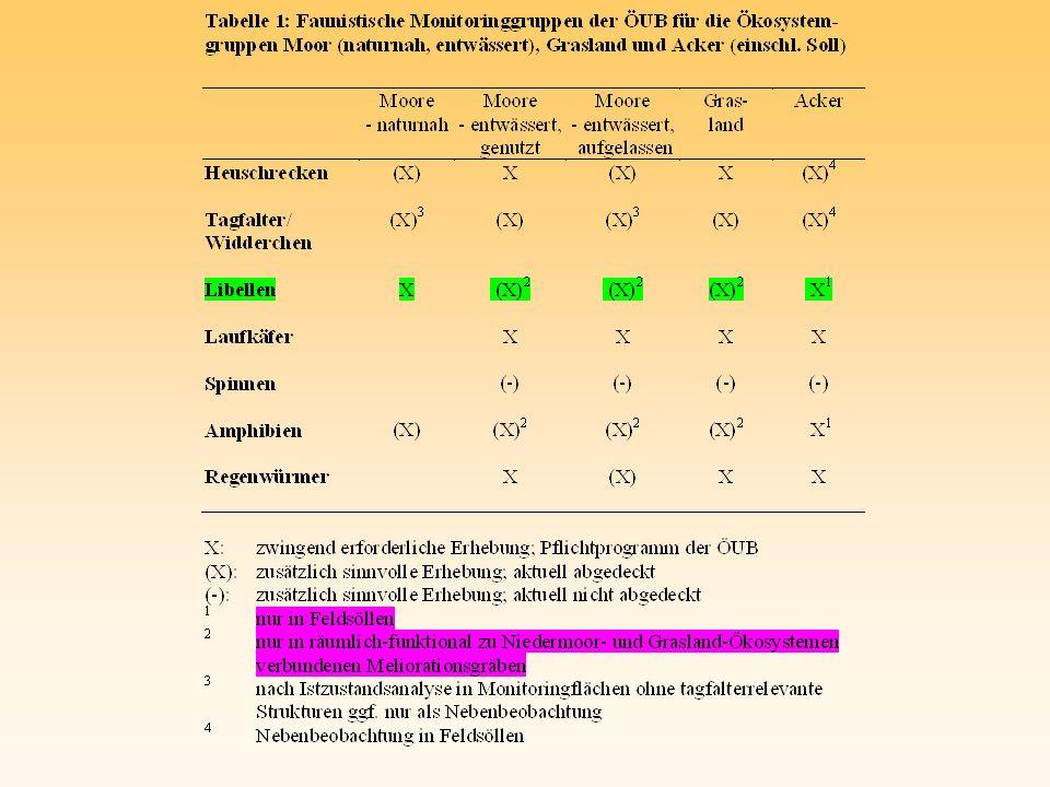 ÖUB-Feldsoll-Brodowin, 16.08.01 A. affinis in Bbg./ O. BRAUNER