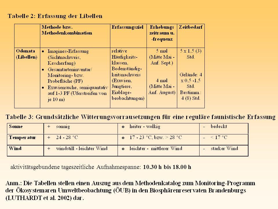 Besondere Bedeutung von J.effusus-Schlenken als Lebensraum sowie als Schlüpfsubstrat A.