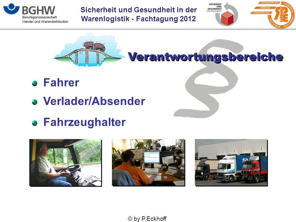 Sicherheit und Gesundheit in der Warenlogistik - Fachtagung 2012 © by P.Eckhoff Fahrer Verantwortungsbereiche Verlader/Absender Fahrzeughalter
