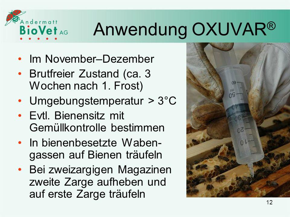 12 Anwendung OXUVAR ® Im November–Dezember Brutfreier Zustand (ca. 3 Wochen nach 1. Frost) Umgebungstemperatur > 3°C Evtl. Bienensitz mit Gemüllkontro