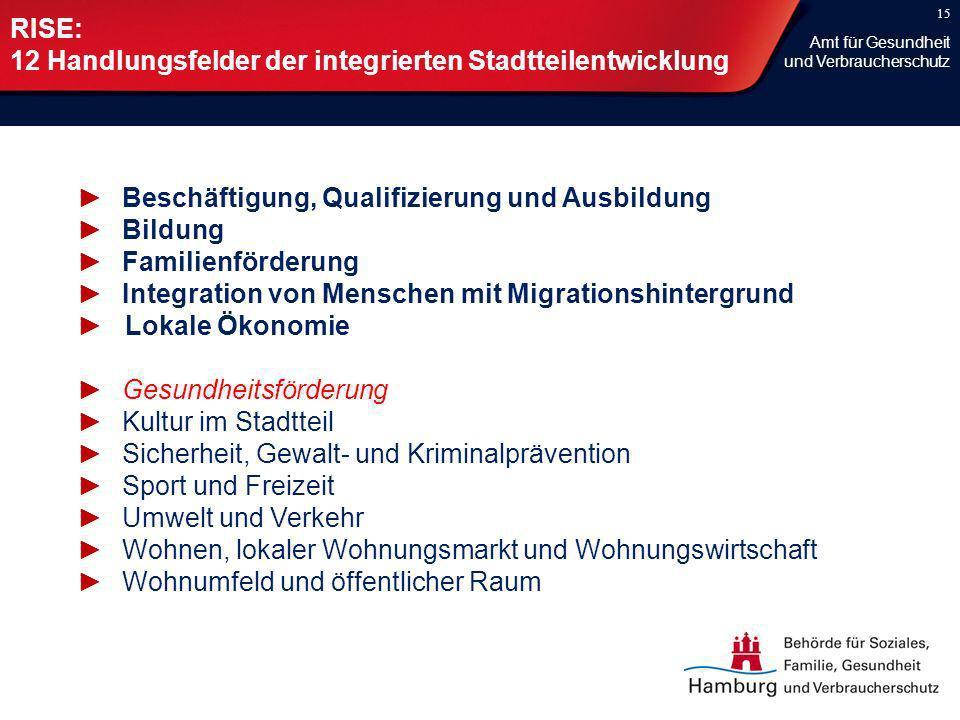 15 RISE: 12 Handlungsfelder der integrierten Stadtteilentwicklung Beschäftigung, Qualifizierung und Ausbildung Bildung Familienförderung Integration v