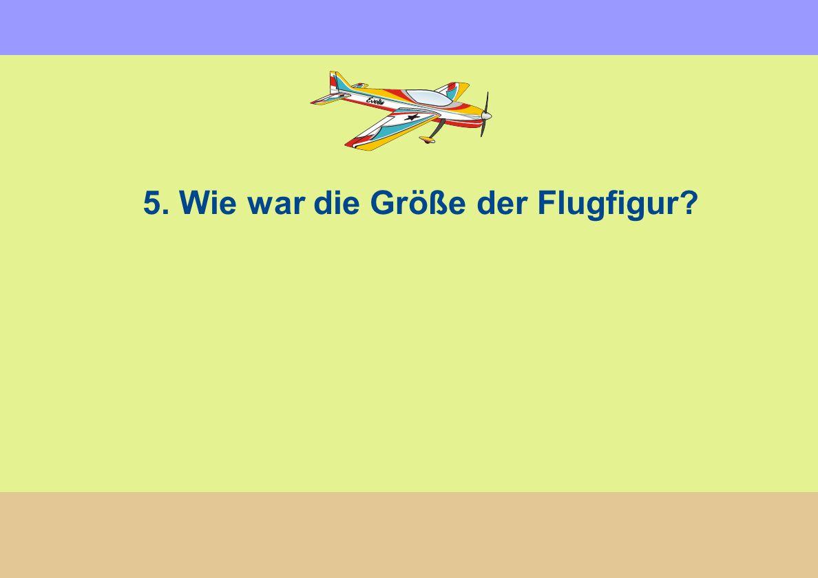 5. Wie war die Größe der Flugfigur?