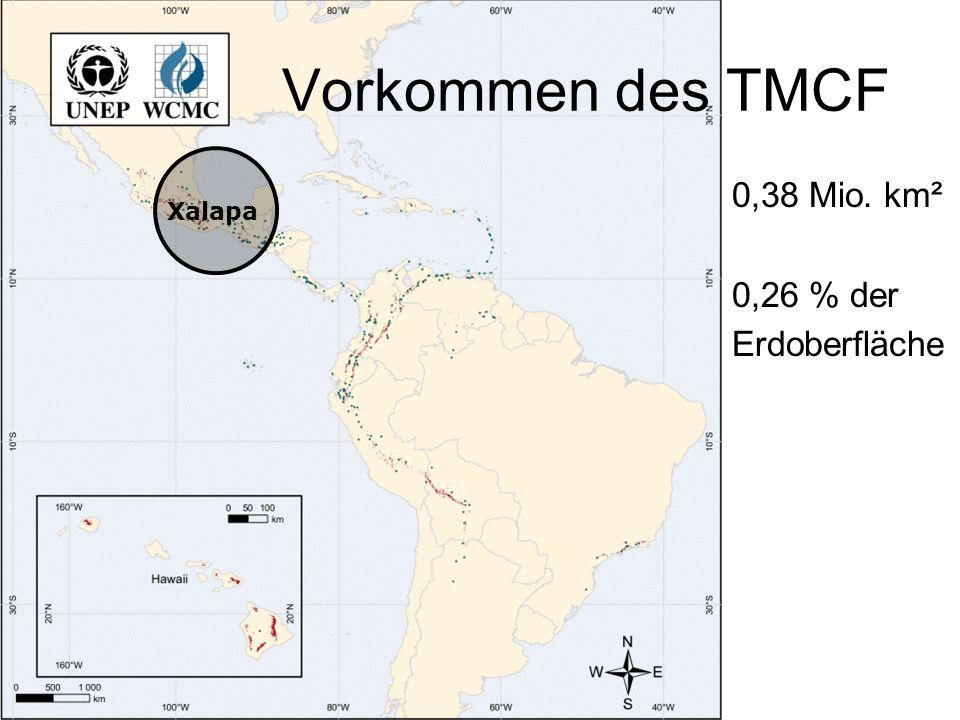 Vorkommen des TMCF 0,38 Mio. km² 0,26 % der Erdoberfläche Xalapa