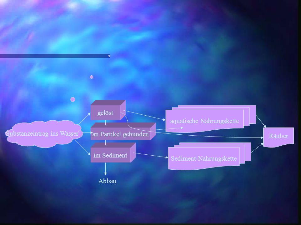 gelöst an Partikel gebunden im Sediment aquatische Nahrungskette Sediment-Nahrungskette Räuber Substanzeintrag ins Wasser Abbau