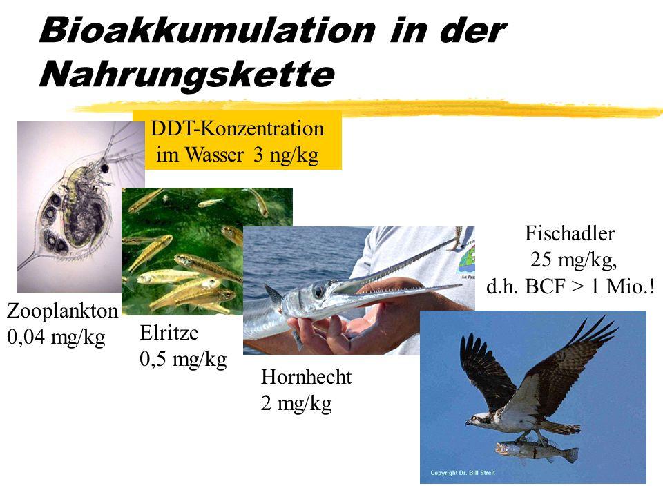 DDT-Konzentration im Wasser 3 ng/kg Bioakkumulation in der Nahrungskette Fischadler 25 mg/kg, d.h. BCF > 1 Mio.! Hornhecht 2 mg/kg Elritze 0,5 mg/kg Z