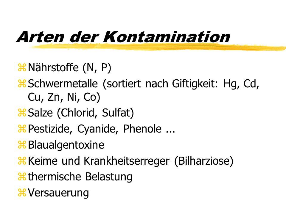 Arten der Kontamination zNährstoffe (N, P) zSchwermetalle (sortiert nach Giftigkeit: Hg, Cd, Cu, Zn, Ni, Co) zSalze (Chlorid, Sulfat) zPestizide, Cyan