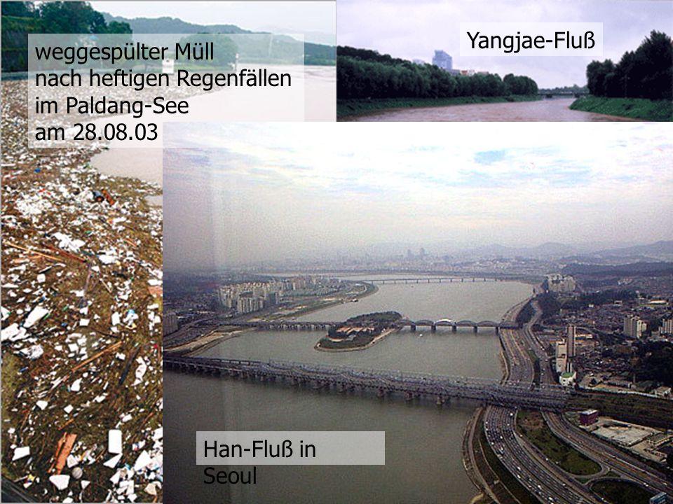 weggespülter Müll nach heftigen Regenfällen im Paldang-See am 28.08.03 Yangjae-Fluß Han-Fluß in Seoul