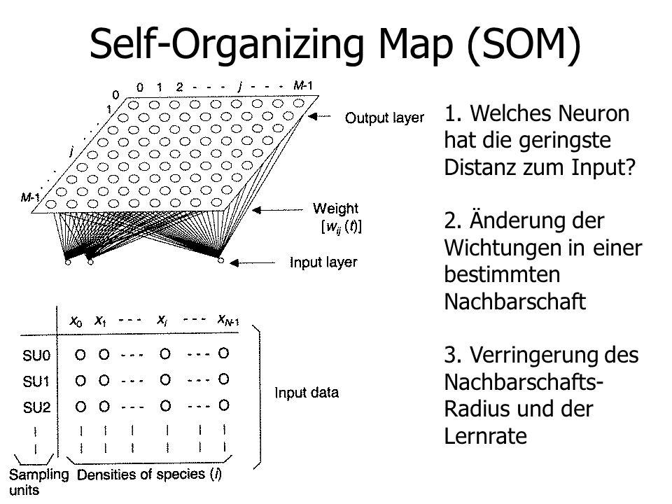 Self-Organizing Map (SOM) 1. Welches Neuron hat die geringste Distanz zum Input? 2. Änderung der Wichtungen in einer bestimmten Nachbarschaft 3. Verri