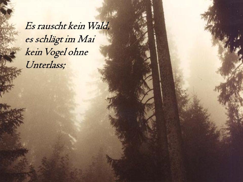 Es rauscht kein Wald, es schlägt im Mai kein Vogel ohne Unterlass;