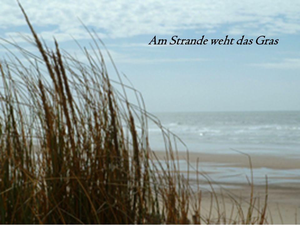 Am Strande weht das Gras