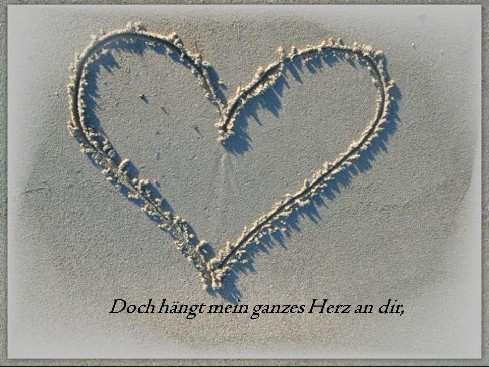 Doch hängt mein ganzes Herz an dir,