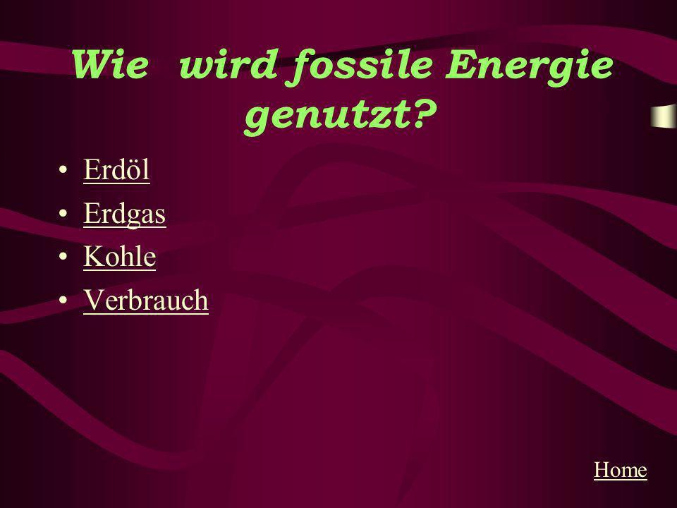 Wie wird fossile Energie genutzt? Erdöl Erdgas Kohle Verbrauch Home