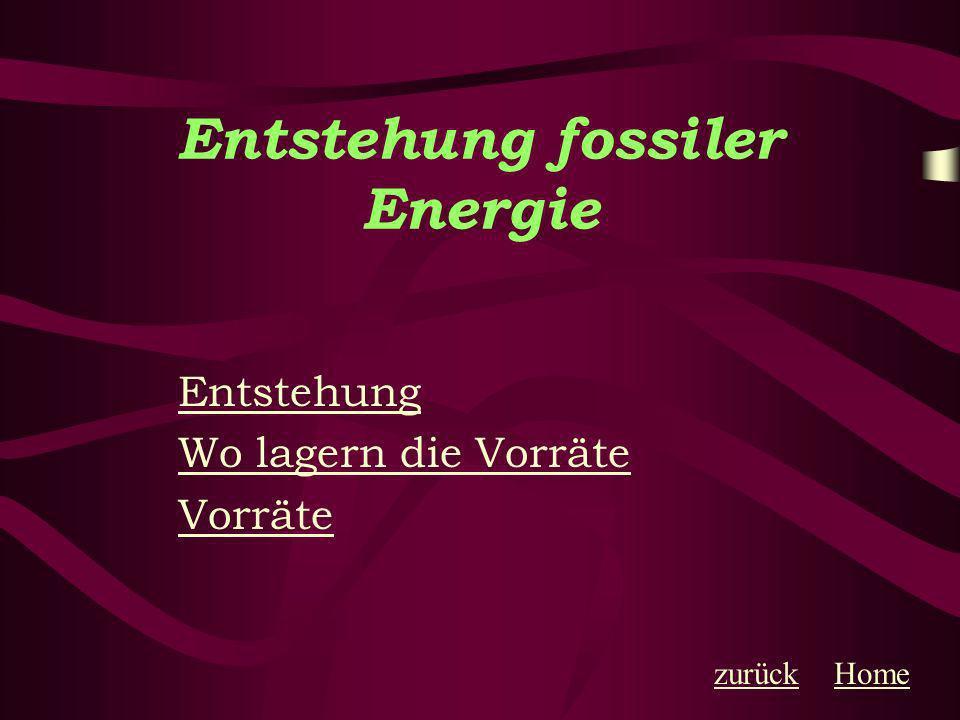 Entstehung fossiler Energie Fossile Energie entstand in Jahrmillionen aus der Ablagerung gestorbener Kleinstlebewesen auf Meer-und Seeböden.