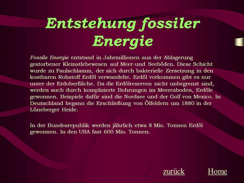 Entstehung fossiler Energie Fossile Energie entstand in Jahrmillionen aus der Ablagerung gestorbener Kleinstlebewesen auf Meer-und Seeböden. Diese Sch