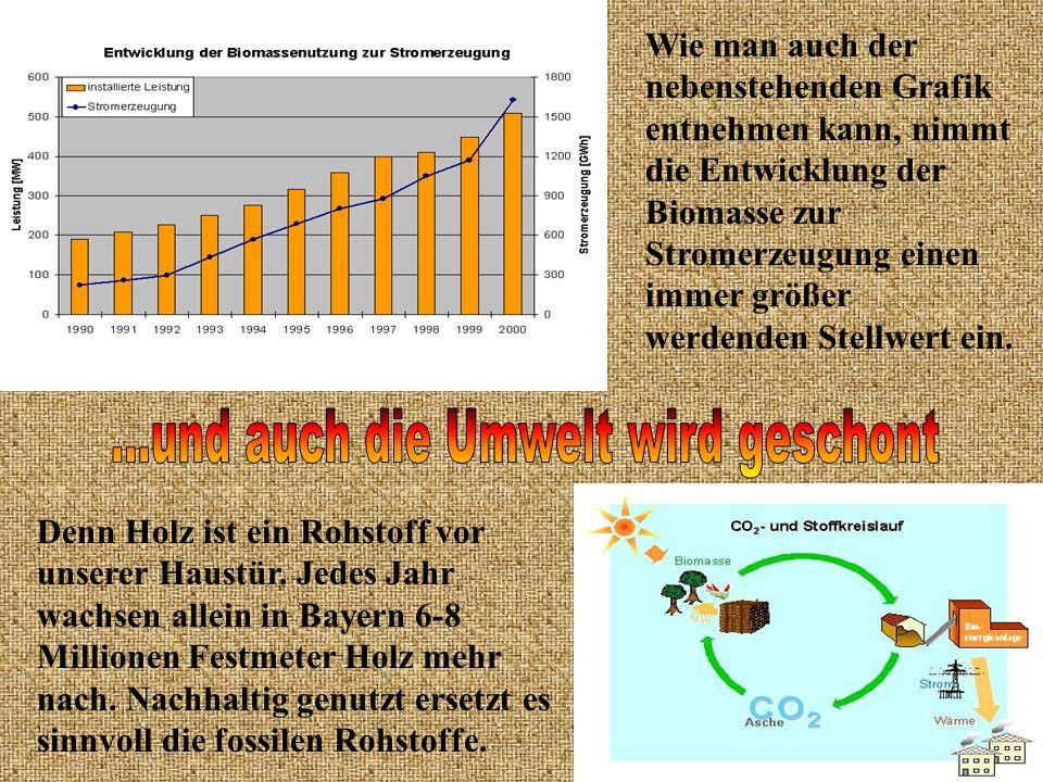 Wie man auch der nebenstehenden Grafik entnehmen kann, nimmt die Entwicklung der Biomasse zur Stromerzeugung einen immer größer werdenden Stellwert ei